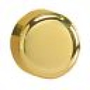 Z2SB6P Polished Brass Knob for Dimension Screwless Dimmers