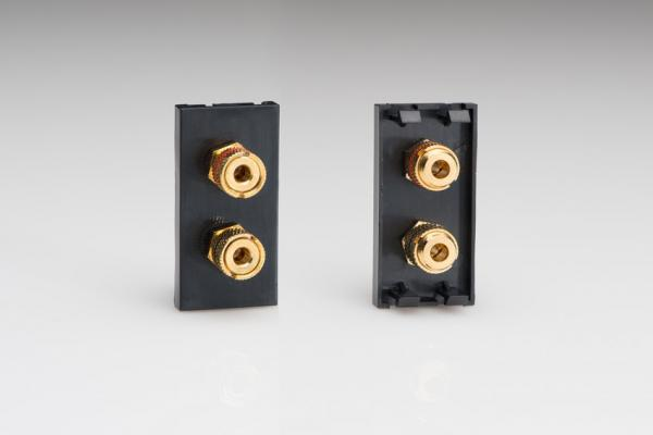 Z2GSP2B Varilight Speaker Module in Black with 2 Binding Posts. Use with Varilight Data Grid Plates